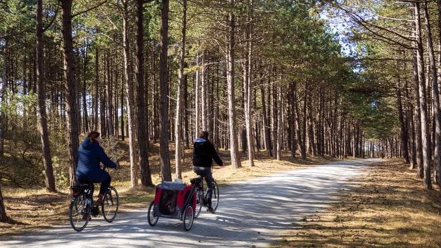 Wat te doen in Enkhuizen? 12 leuke tips voor een weekendje West-Friesland